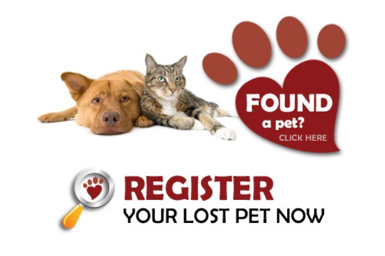 Lost or found a pet? Try PetsLocated