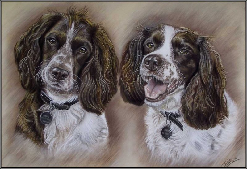 Portrait of Spaniels