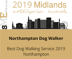 Best Dog Walking Service 2019