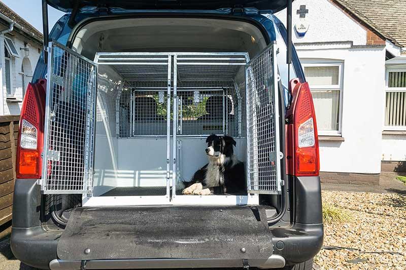 Pet Transport UK - Northampton Dog Walker