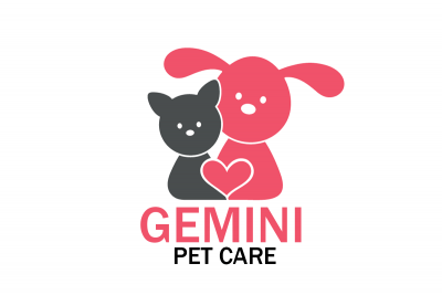 Dog Walker Durham - Gemini Pet Care