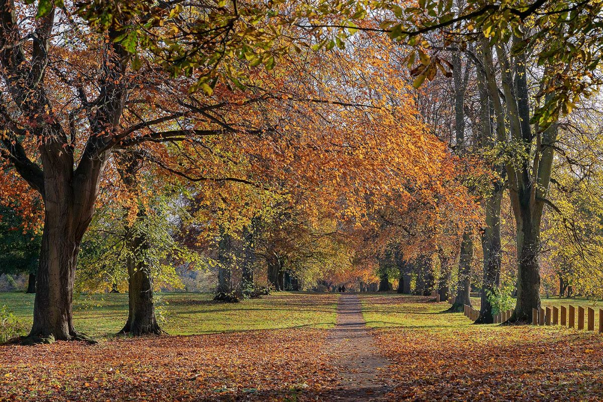 Abington Park in Autumn